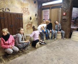 Výukový program v ZOO Jihlava 1. - 3. ročník